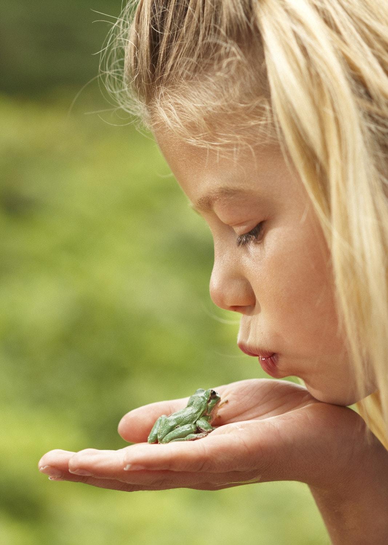Junges Mädchen küsst den grünen Laubfrosch auf ihrer Hand