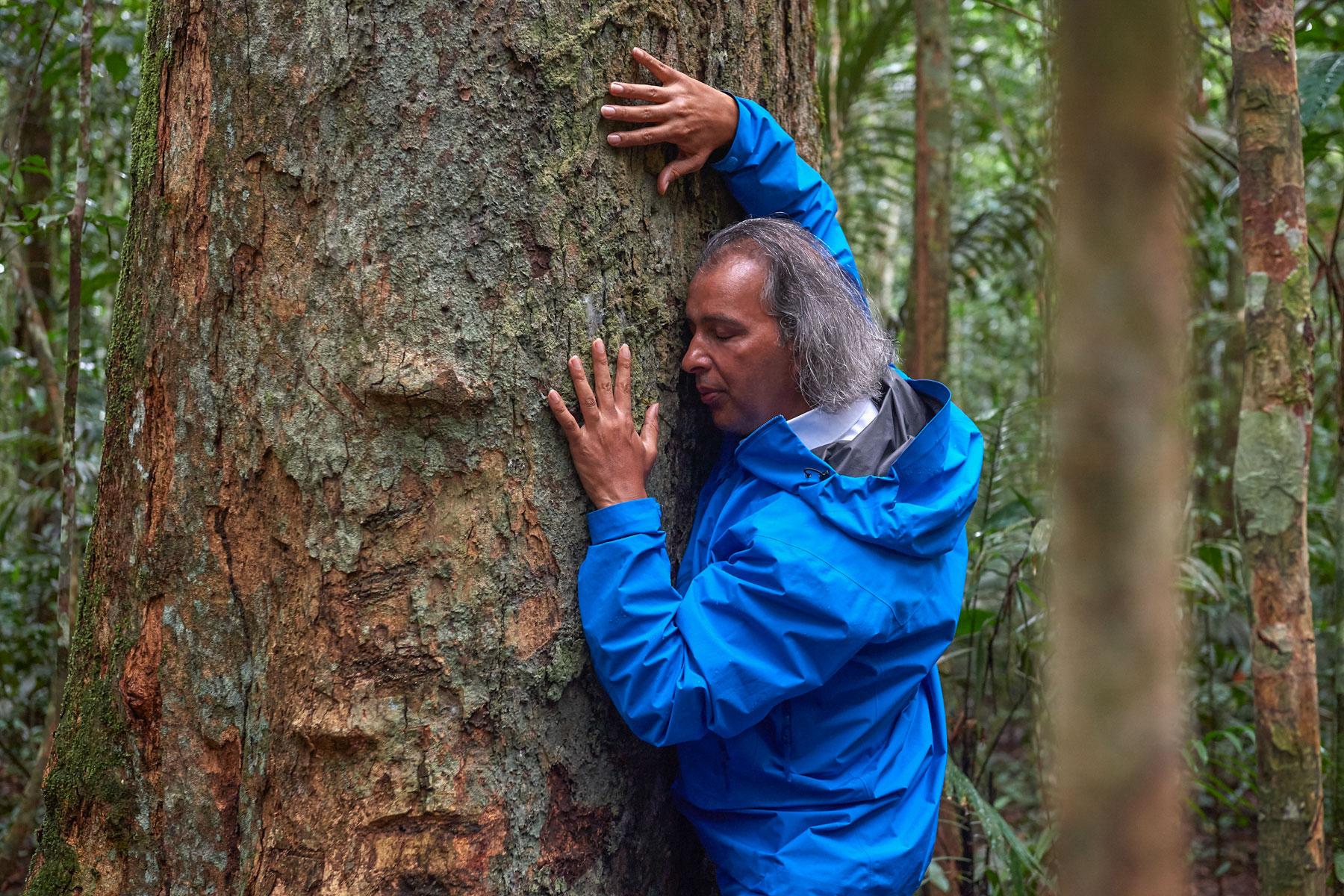 Mann segnet im Regenwald liebevoll einen großen Teakholzbaum