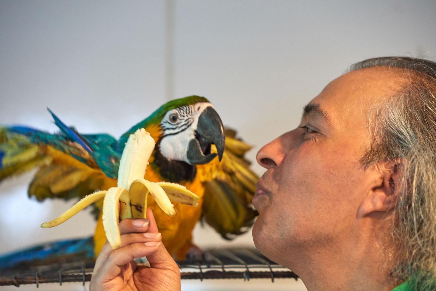 Mann kommuniziert liebevoll mit einem kranken Papagei