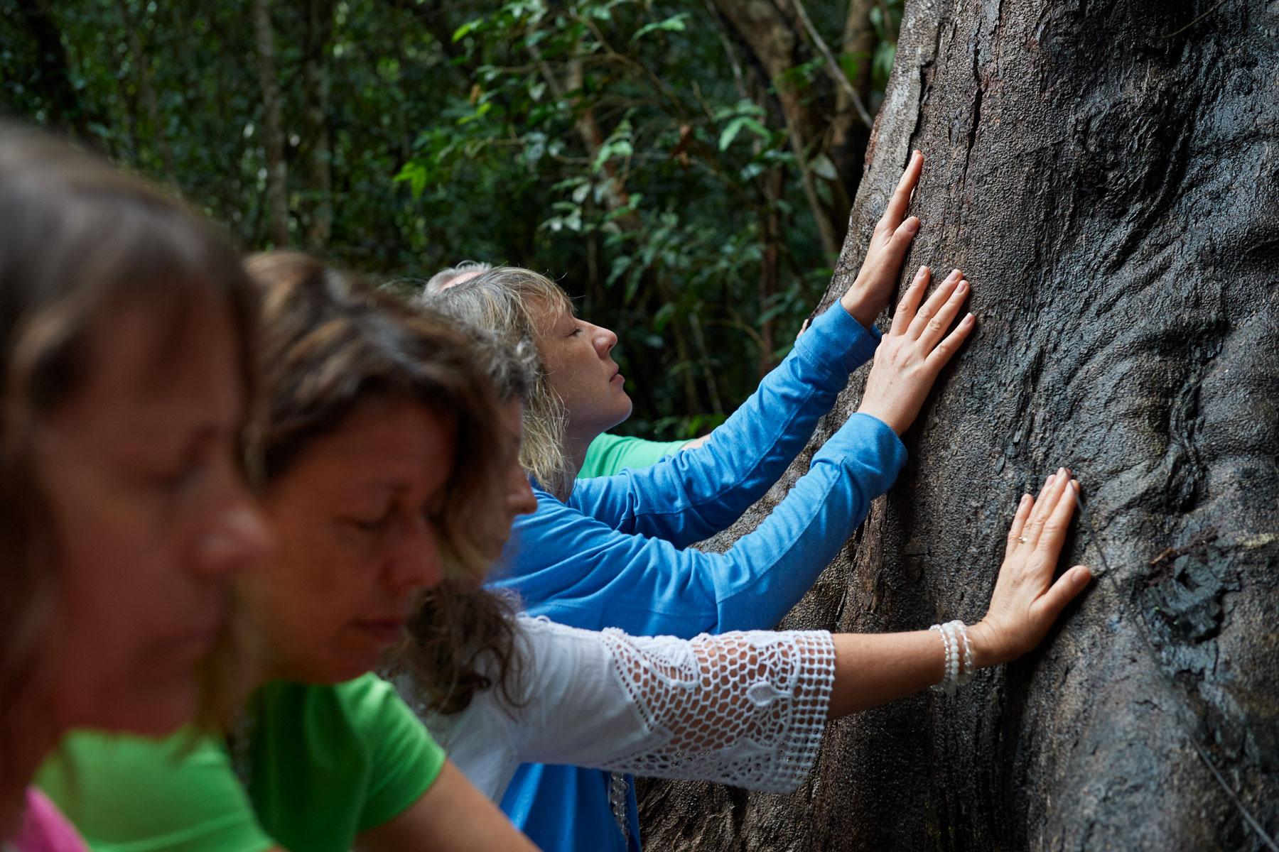 Foto von europäischen Frauen, die einen großen Baum im Regenwald befühlen
