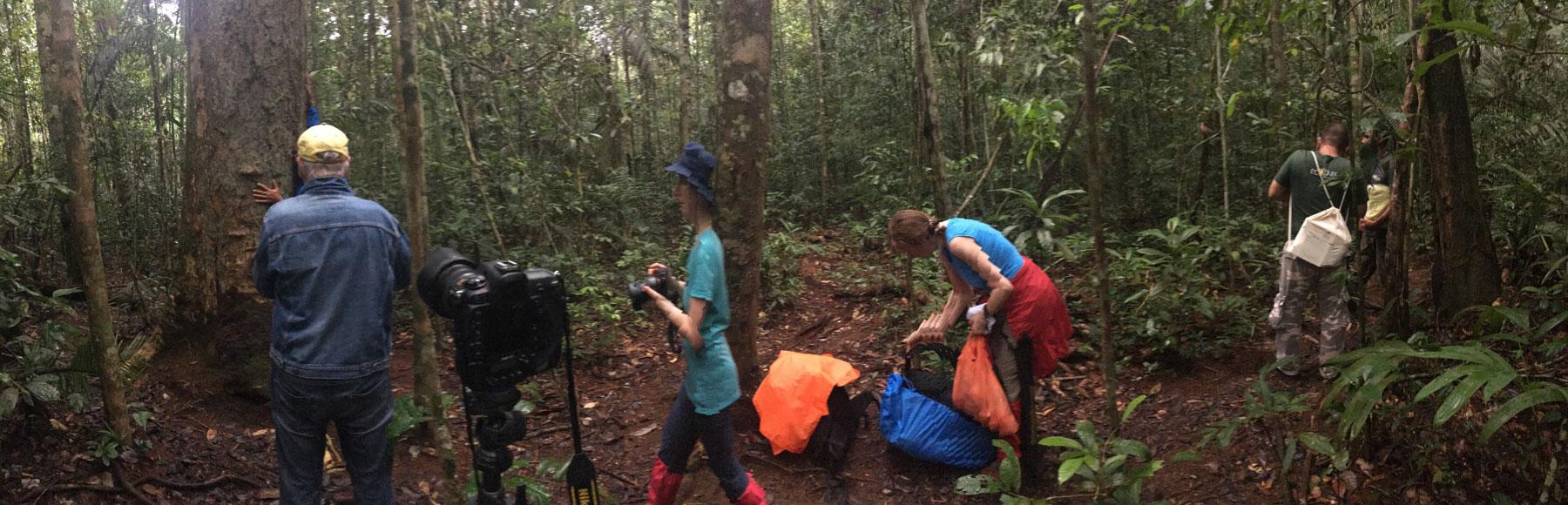 Fotografie eines Foto-undFilmteams bei der Arbeit im Regenwald