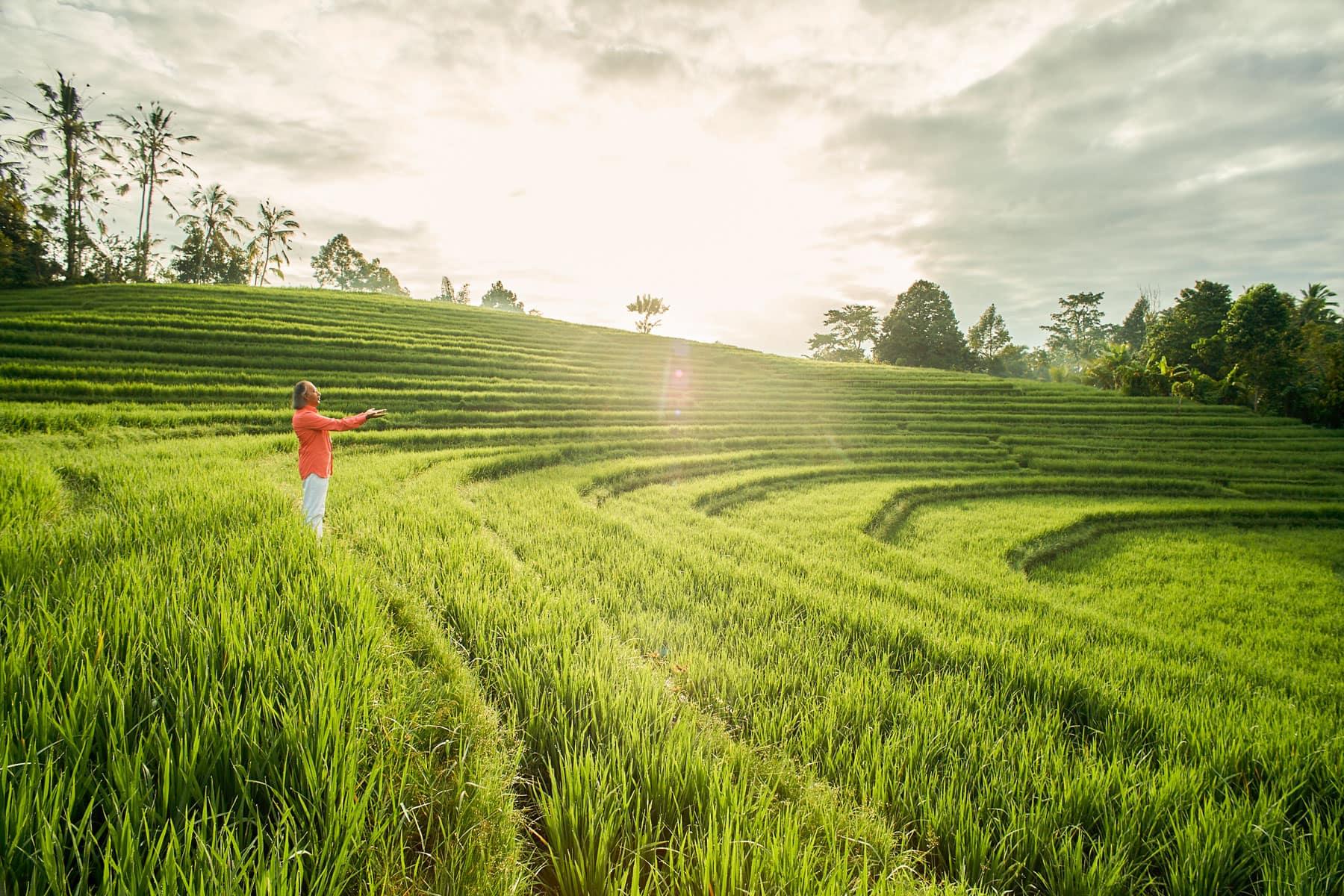 Foto eines Mannes mit rotem Hemd, der in sonnendurchfluteten, grünen Reisterrassen steht