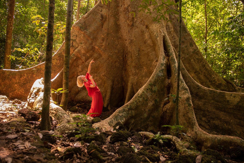 totale tänzerische Hingabe vor einem Mammutbaum