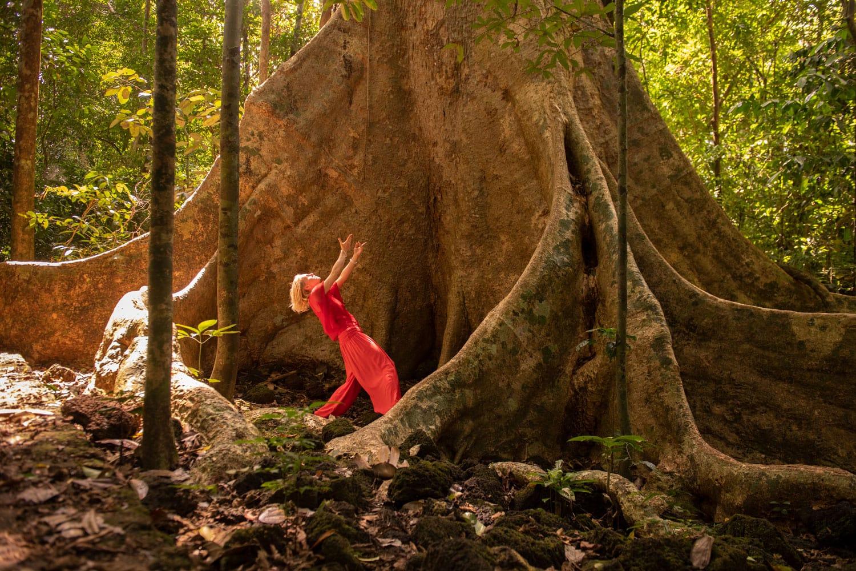 Tänzerin in rot vor einem Mammutbaum